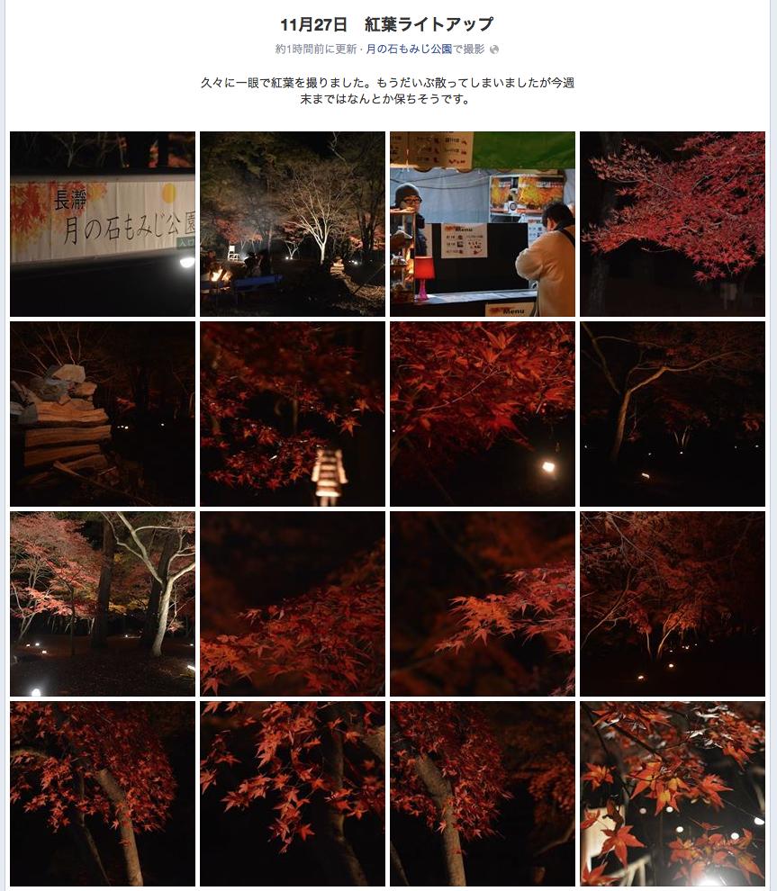 11月27日 紅葉ライトアップアルバム