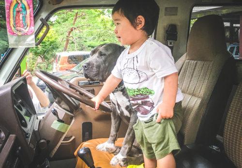 スタッフ募集:ドライバー(運転手)