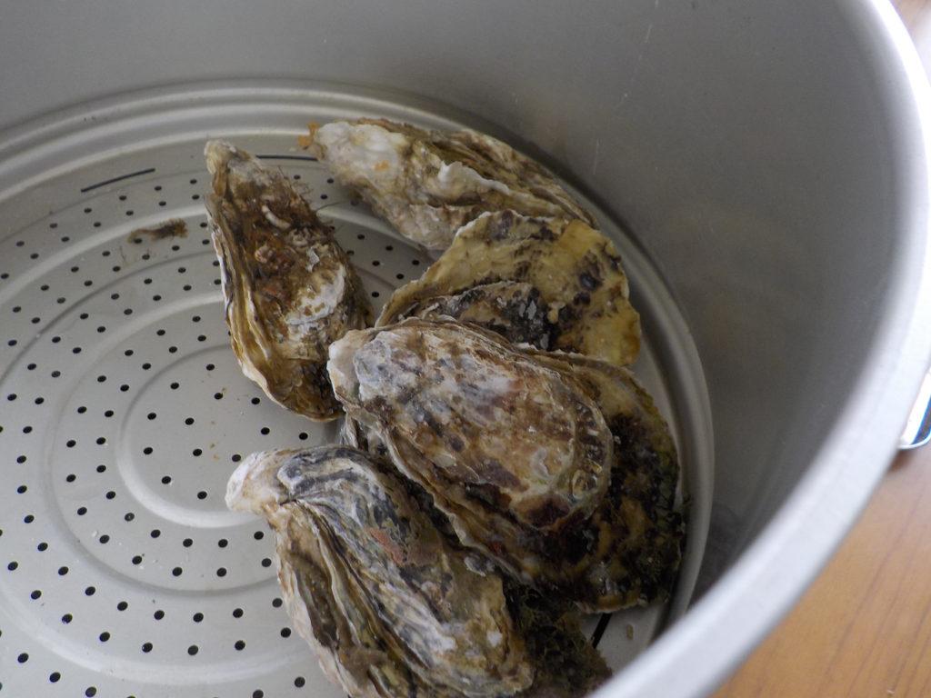 那珂川下見で食した蒸し牡蠣