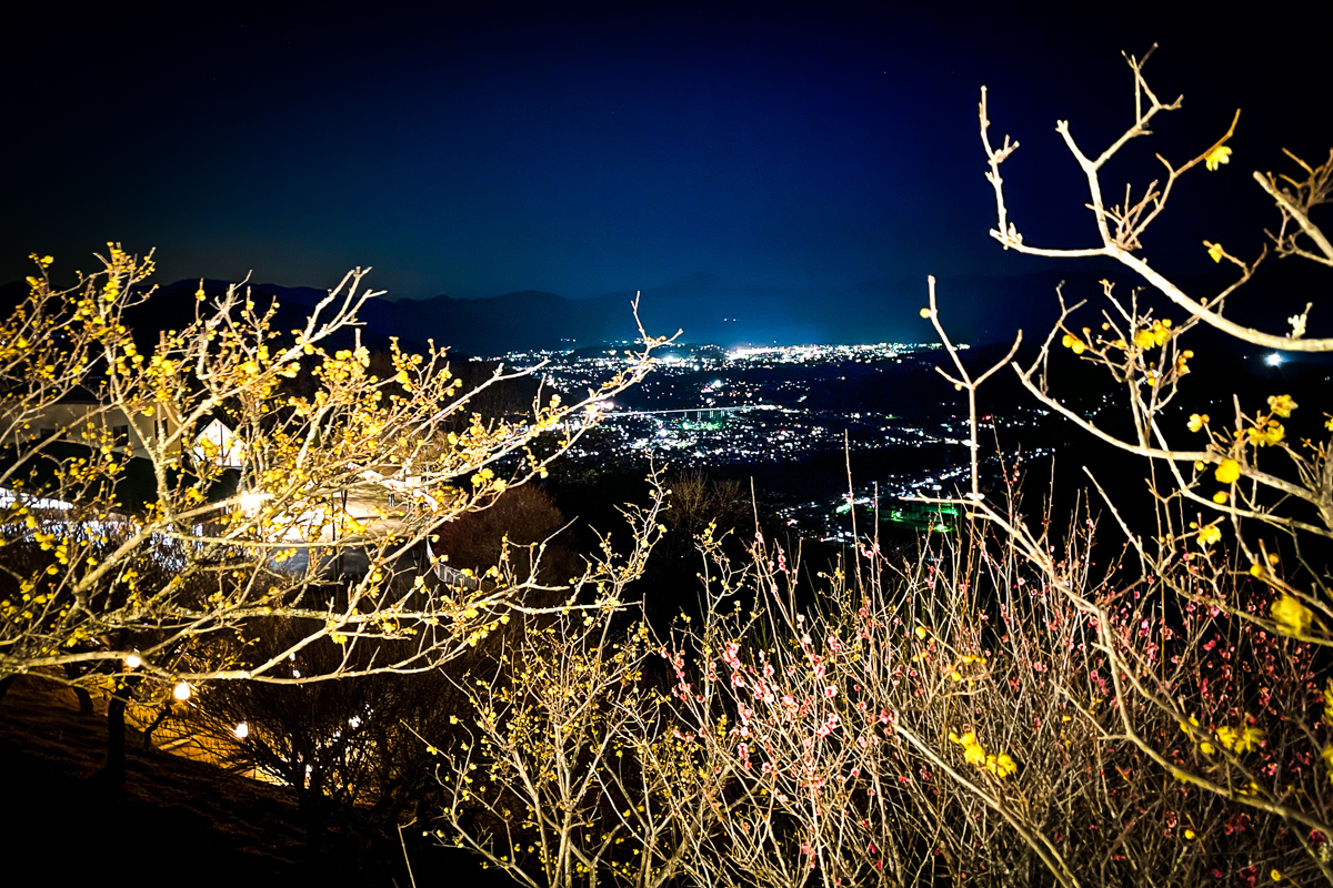 秩父市街の夜景
