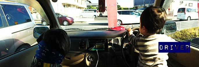 blog_tittle_driver_2014
